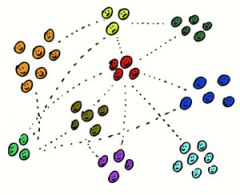 grups - punts en comu